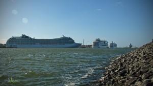 Immer wieder sehenswert, die Kreuzfahrtschiffe in Warnemünde